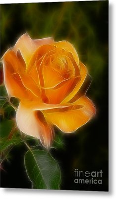 Orange Rose 6292-fractal Metal Print by Gary Gingrich Galleries
