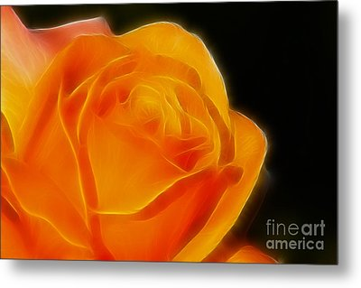 Orange Rose 6308 Metal Print by Gary Gingrich Galleries