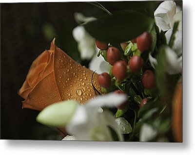 Orange Rose Metal Print by Lesley Rigg