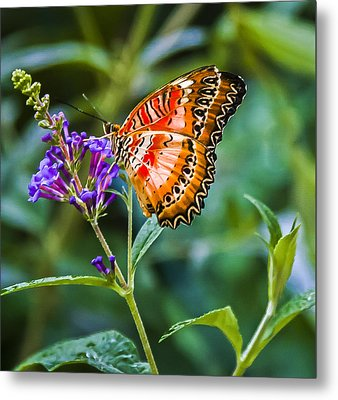 Orange White And Black Stripes On Purple Metal Print by Karen Stephenson