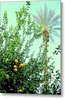 Oranges And Palm Trees Metal Print