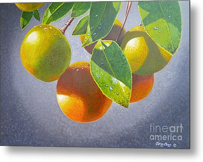 Oranges Metal Print by Carey Chen