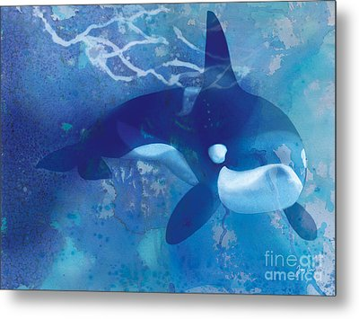 Orca, Whale Metal Print by Tracy Herrmann