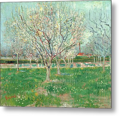 Orchard In Blossom, 1880  Metal Print by Vincent van Gogh
