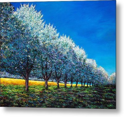 Orchard Row Metal Print