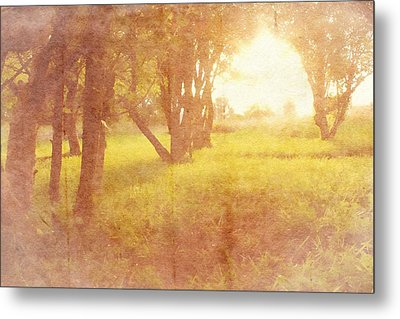 Orchard View Metal Print