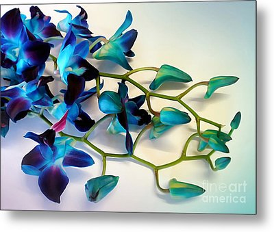 Orchid Bouquet Metal Print by Kaye Menner