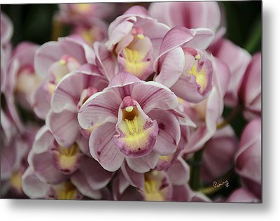 Orchid Bouquet Metal Print by Penny Lisowski