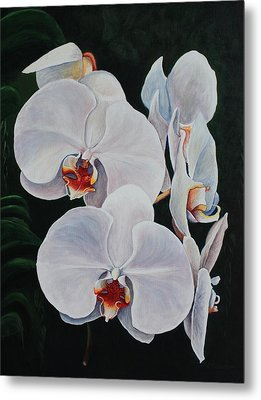 Orchid Fever Metal Print by Pam Kaur