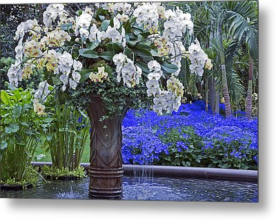Orchid Fountain Metal Print
