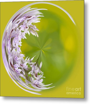 Orchid Moon Metal Print by Anne Gilbert
