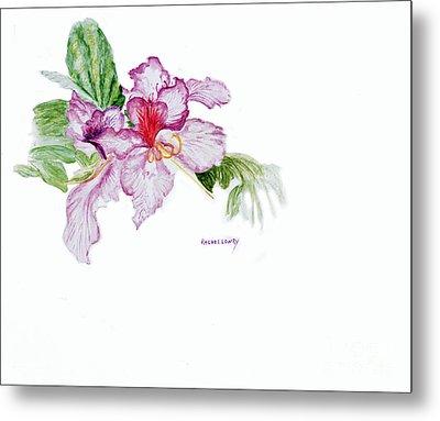 Orchid Metal Print by Rachel Lowry