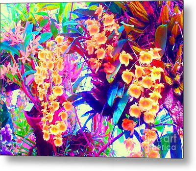 Orchid Splash Metal Print by Ann Johndro-Collins