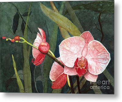 Metal Print featuring the painting Orchid Trio 2 by Barbara Jewell