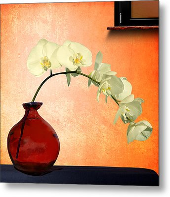 Orchids 2 Metal Print by Mark Ashkenazi