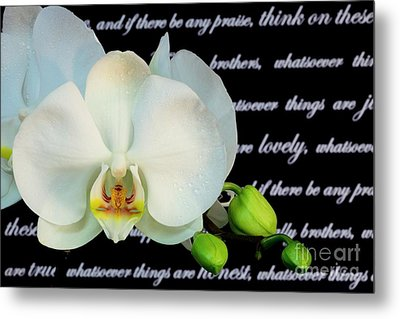 Orchids And Scripture Metal Print by Pattie Calfy