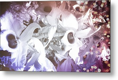 Orchids In Fantasy Colors Metal Print