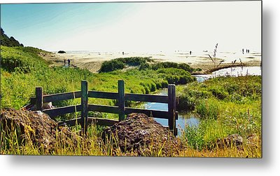 Oregon Beach 1 Metal Print by Larry Campbell