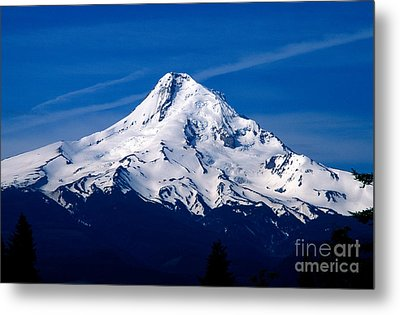 Oregon - Mt. Hood Metal Print by Terry Elniski