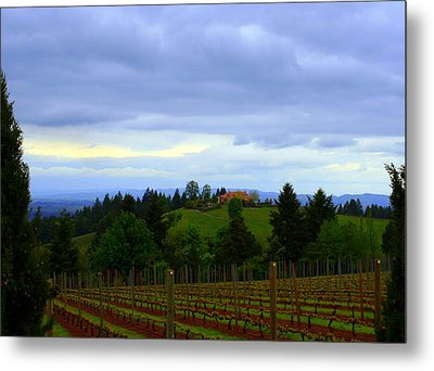 Metal Print featuring the photograph Oregon Wine Country by Debra Kaye McKrill