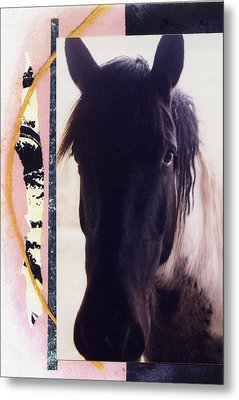 Metal Print featuring the photograph Oreo by Mary Ann  Leitch