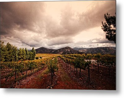 Metal Print featuring the photograph Orfila by Ryan Weddle