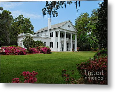 Metal Print featuring the photograph Orton Plantation by Bob Sample