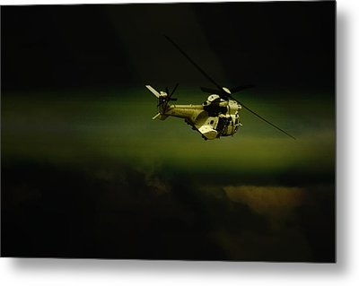 Metal Print featuring the photograph Oryx by Paul Job