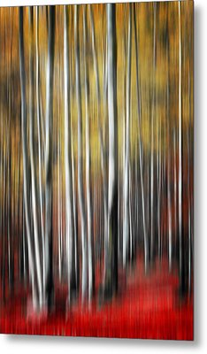 Metal Print featuring the photograph Osmosis by Philippe Sainte-Laudy