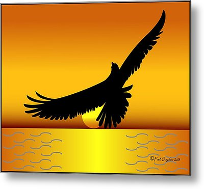 Osprey Over Gold Ocean Metal Print by Fred Croydon