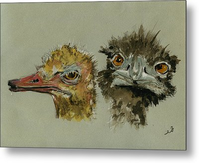 Ostrichs Head Study Metal Print by Juan  Bosco