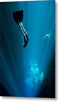 Into The Blue Metal Print by One ocean One breath