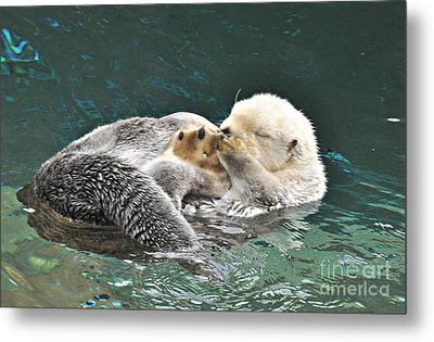 Otter Dreams Metal Print