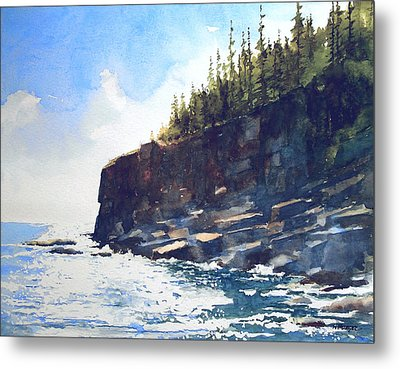 Otter Point Metal Print