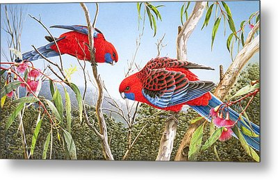 Our Beautiful Home - Crimson Rosellas Metal Print by Frances McMahon