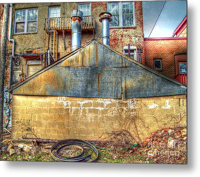 Out Back Metal Print by MJ Olsen