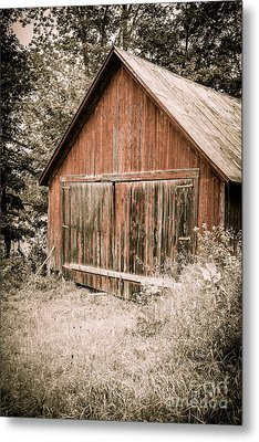 Out By The Woodshed Metal Print by Edward Fielding