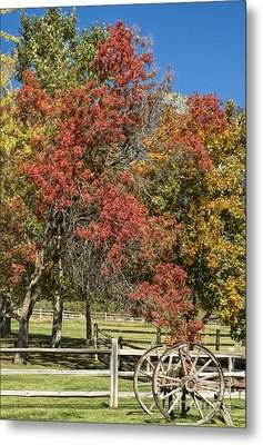 Out In The Country Metal Print by Peggy Hughes