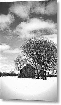 Out In The Sticks Metal Print by Thomas Young