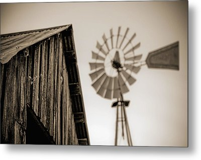 Metal Print featuring the photograph Out Of Focus by Amber Kresge