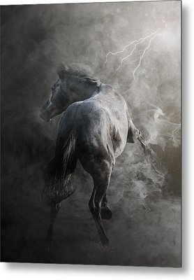 Out Of The Fire Metal Print by Pamela Hagedoorn