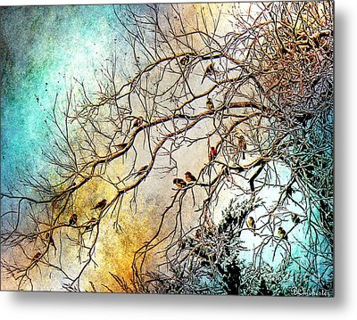 Out On A Limb In Jewel Tones Metal Print by Barbara Chichester