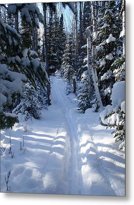 Metal Print featuring the photograph Out On The Trail by Sandra Updyke