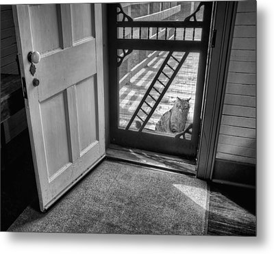 Out The Back Metal Print