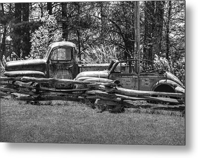 Out To Pasture Metal Print by Michael Allen