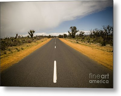 Outback Road Metal Print by Tim Hester