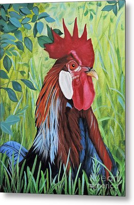 Outlaw Rooster Metal Print