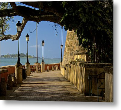 Outside The Walls Metal Print