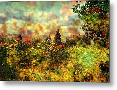Over In The Meadow 1 Metal Print by Shirley Sirois