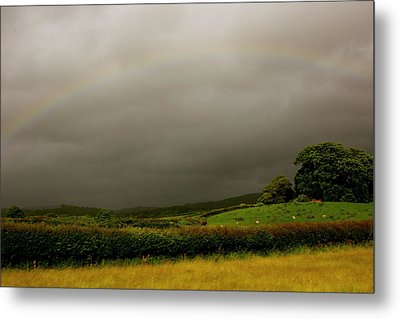 Over The Rainbow Metal Print by Theresa Selley